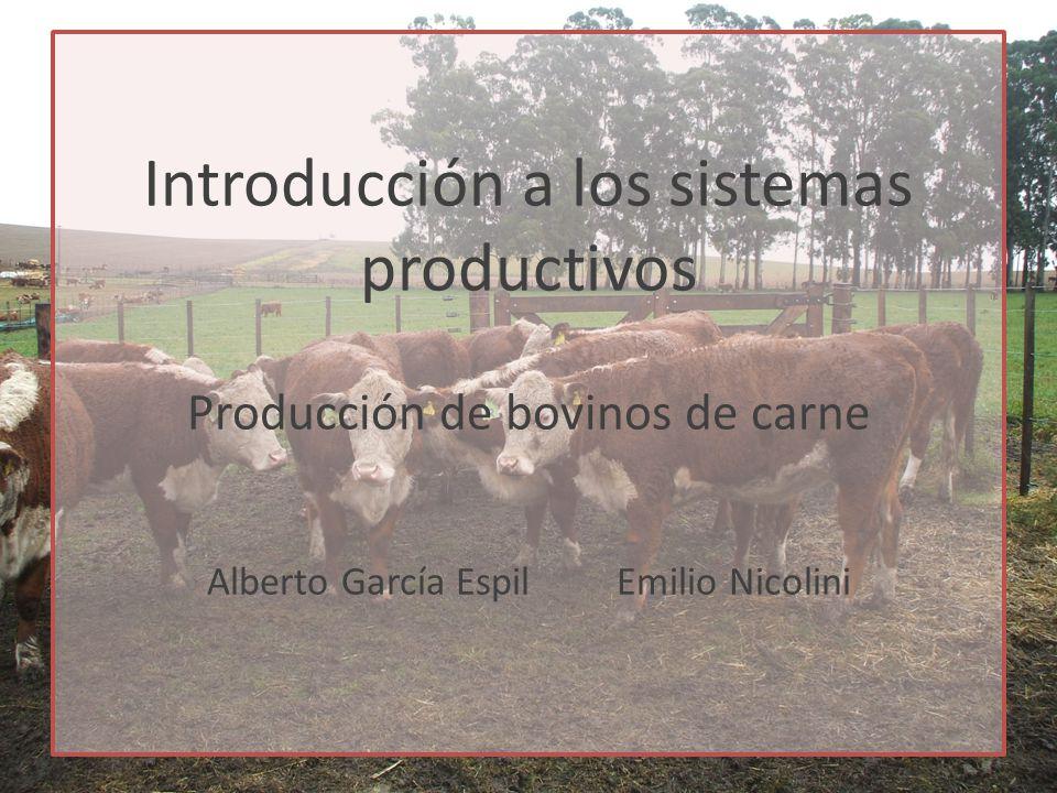 Introducción a los sistemas productivos Producción de bovinos de carne Alberto García Espil Emilio Nicolini