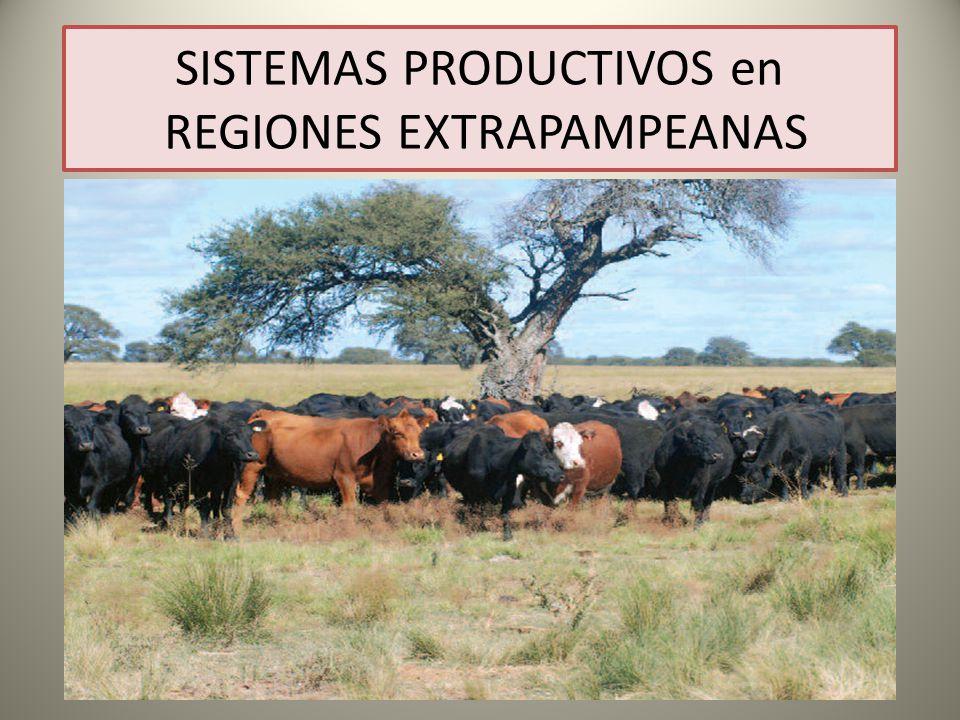 SISTEMAS PRODUCTIVOS en REGIONES EXTRAPAMPEANAS