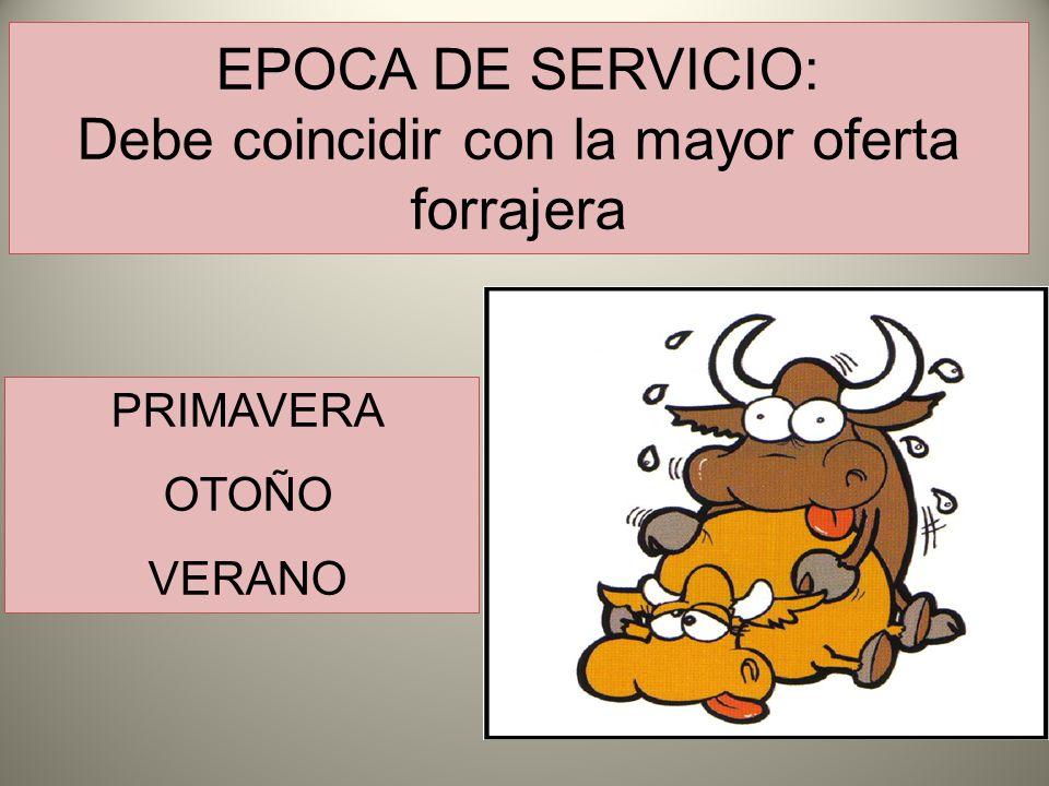 EPOCA DE SERVICIO: Debe coincidir con la mayor oferta forrajera PRIMAVERA OTOÑO VERANO