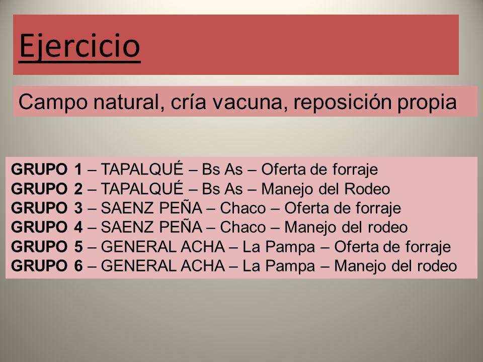 Ejercicio Campo natural, cría vacuna, reposición propia GRUPO 1 – TAPALQUÉ – Bs As – Oferta de forraje GRUPO 2 – TAPALQUÉ – Bs As – Manejo del Rodeo GRUPO 3 – SAENZ PEÑA – Chaco – Oferta de forraje GRUPO 4 – SAENZ PEÑA – Chaco – Manejo del rodeo GRUPO 5 – GENERAL ACHA – La Pampa – Oferta de forraje GRUPO 6 – GENERAL ACHA – La Pampa – Manejo del rodeo