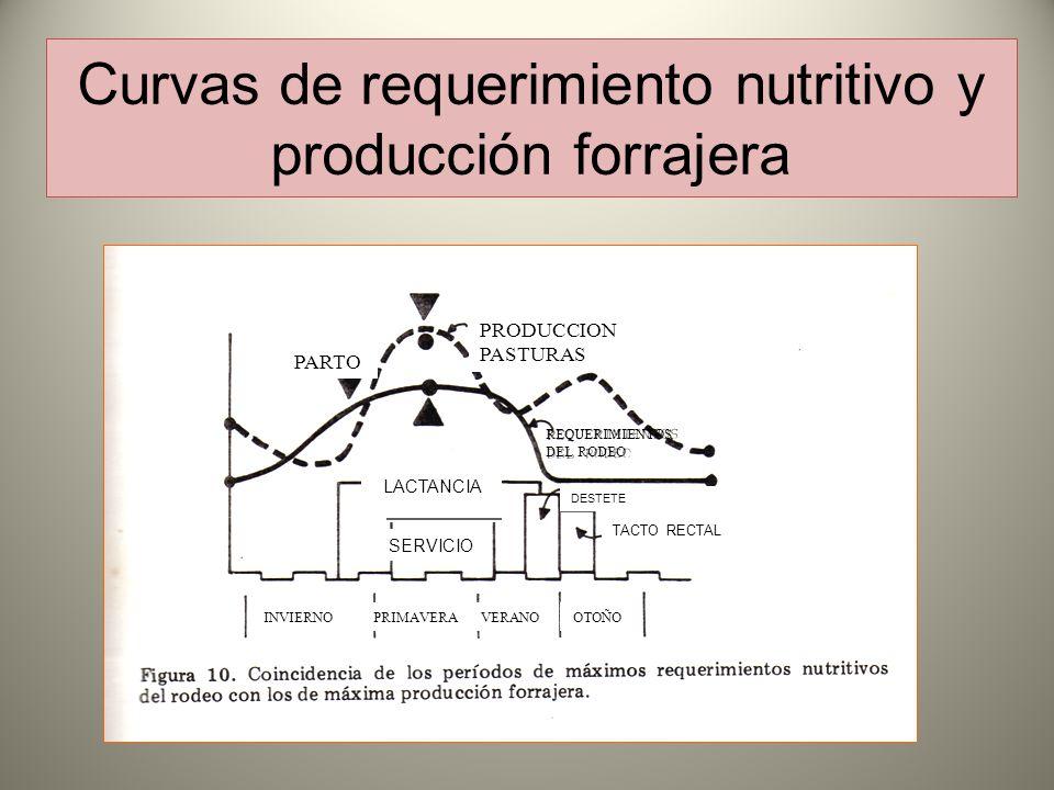 Curvas de requerimiento nutritivo y producción forrajera PRODUCCION PASTURAS PARTO SERVICIO LACTANCIA L INVIERNOPRIMAVERAVERANOOTOÑO REQUERIMIENTOS DEL RODEO TACTO RECTAL DESTETE