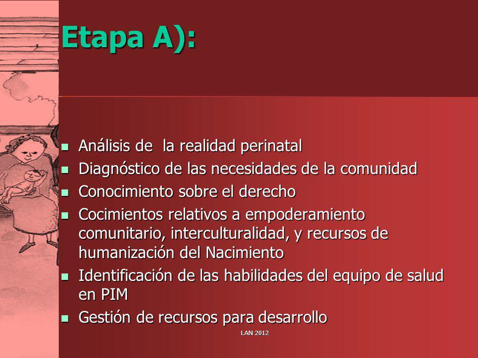 Etapa A): Análisis de la realidad perinatal Análisis de la realidad perinatal Diagnóstico de las necesidades de la comunidad Diagnóstico de las necesi