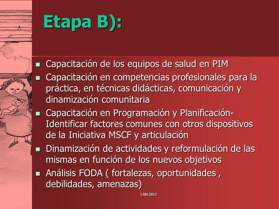 Etapa B): Capacitación de los equipos de salud en PIM Capacitación de los equipos de salud en PIM Capacitación en competencias profesionales para la p