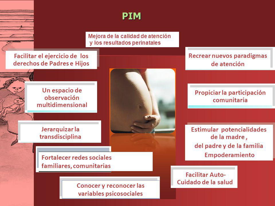 PIM Un espacio de observación multidimensional Conocer y reconocer las variables psicosociales Jerarquizar la transdisciplina Facilitar Auto- Cuidado