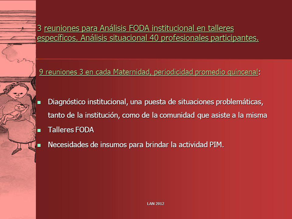 LAN 2012 3 reuniones para Análisis FODA institucional en talleres específicos. Análisis situacional 40 profesionales participantes. 9 reuniones 3 en c