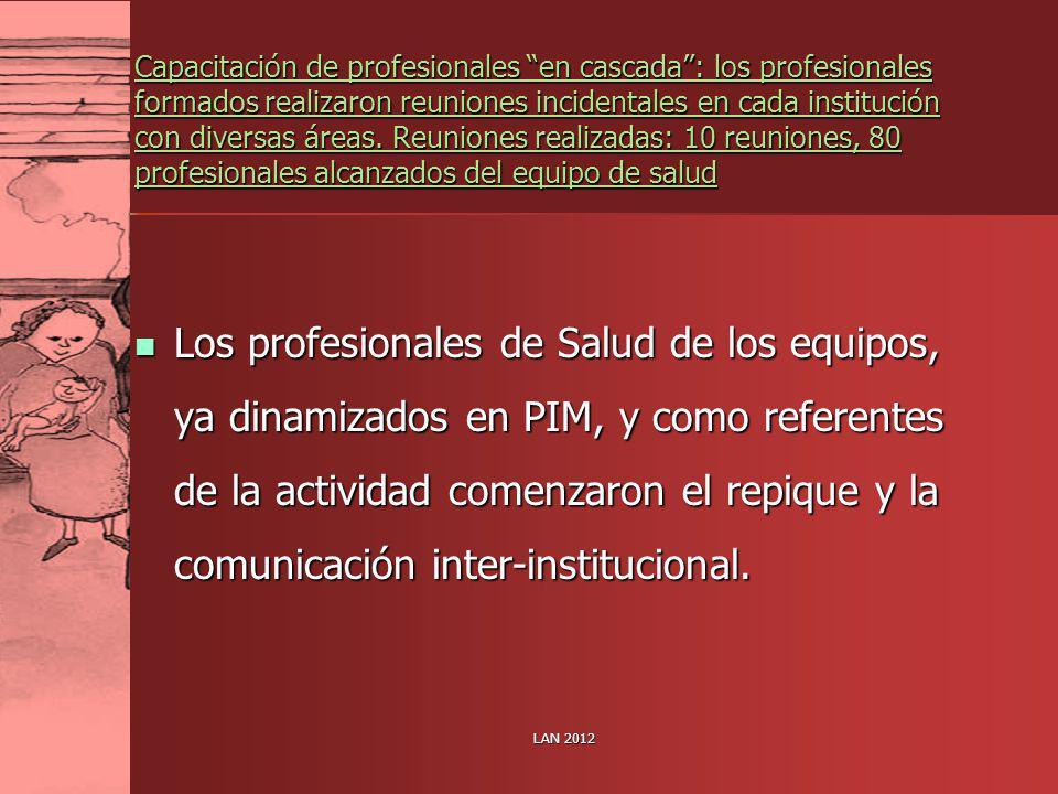LAN 2012 Capacitación de profesionales en cascada: los profesionales formados realizaron reuniones incidentales en cada institución con diversas áreas