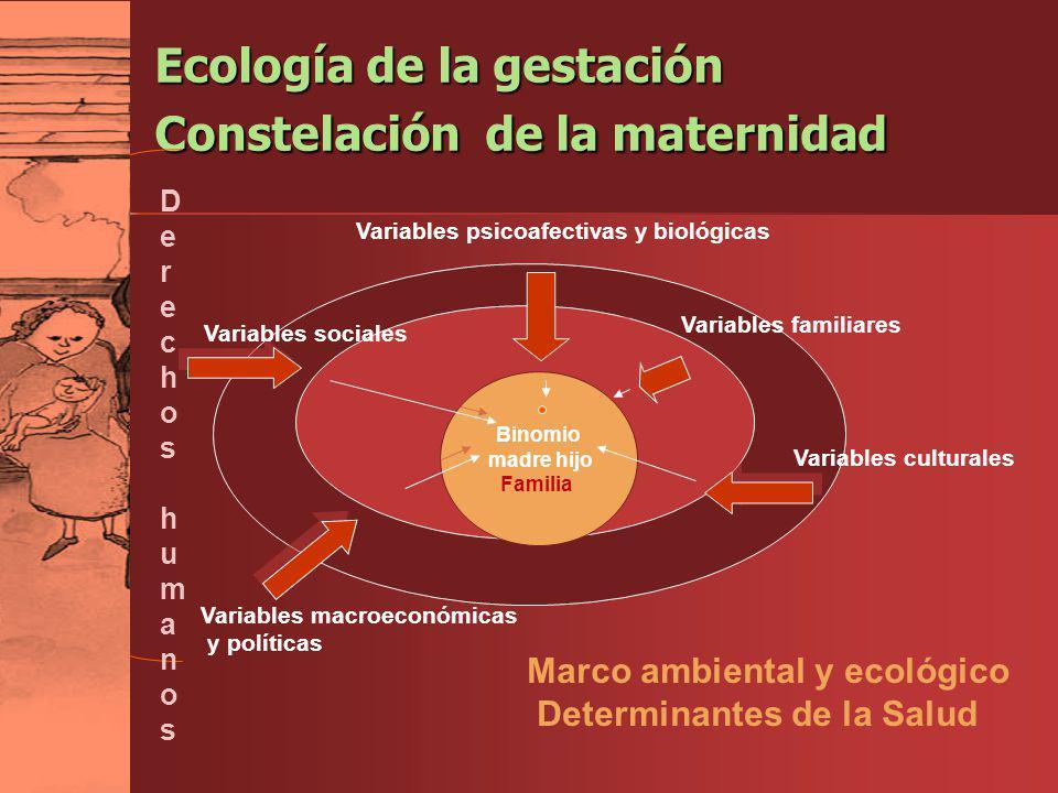 Ecología de la gestación Constelación de la maternidad Binomio madre hijo Familia Variables sociales Variables familiares Variables culturales Variabl