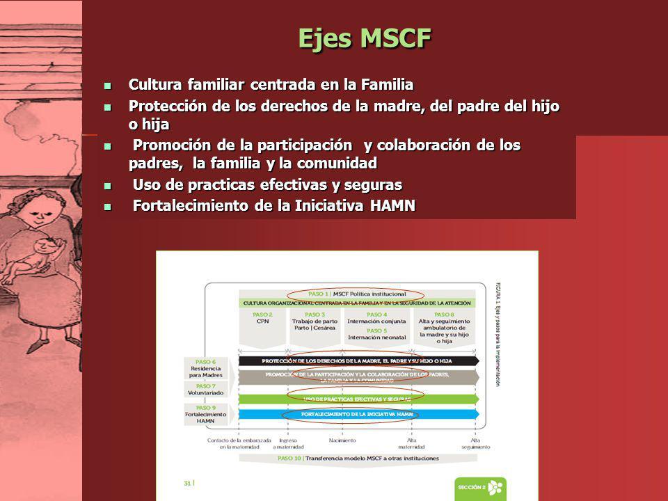 LAN 2012 Ejes MSCF Cultura familiar centrada en la Familia Cultura familiar centrada en la Familia Protección de los derechos de la madre, del padre d