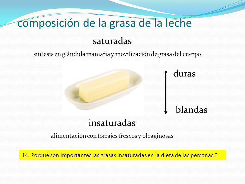 composición de la grasa de la leche saturadas síntesis en glándula mamaria y movilización de grasa del cuerpo insaturadas alimentación con forrajes frescos y oleaginosas duras blandas 14.