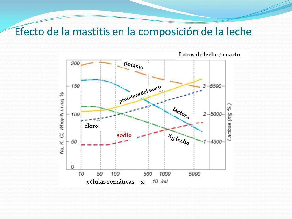 Efecto de la mastitis en la composición de la leche cloro sodio potasio proteínas del suero células somáticas x Kg leche Litros de leche / cuarto lact