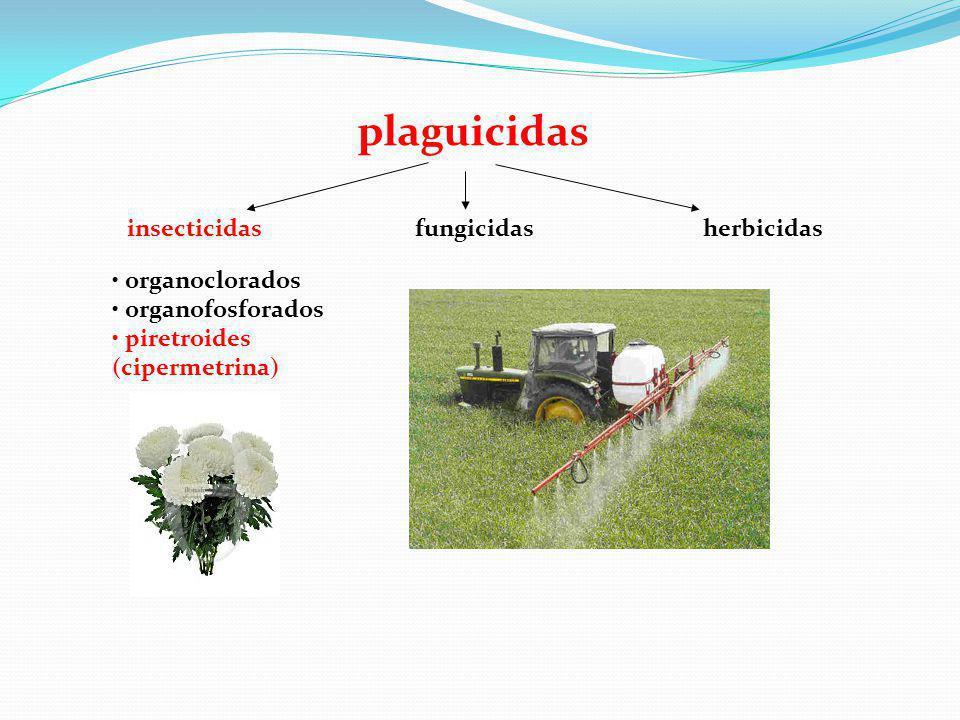 plaguicidas insecticidasfungicidasherbicidas organoclorados organofosforados piretroides (cipermetrina)