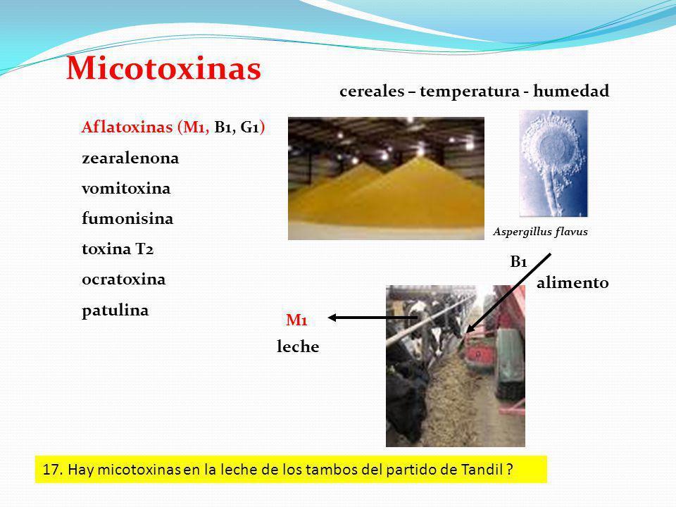 Micotoxinas Aflatoxinas (M1, B1, G1) zearalenona vomitoxina fumonisina toxina T2 ocratoxina patulina Aspergillus flavus B1 M1 leche alimento cereales – temperatura - humedad 17.