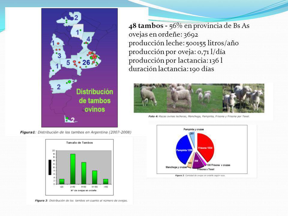 48 tambos - 56% en provincia de Bs As ovejas en ordeñe: 3692 producción leche: 500155 litros/año producción por oveja: 0,71 l/día producción por lactancia: 136 l duración lactancia: 190 días