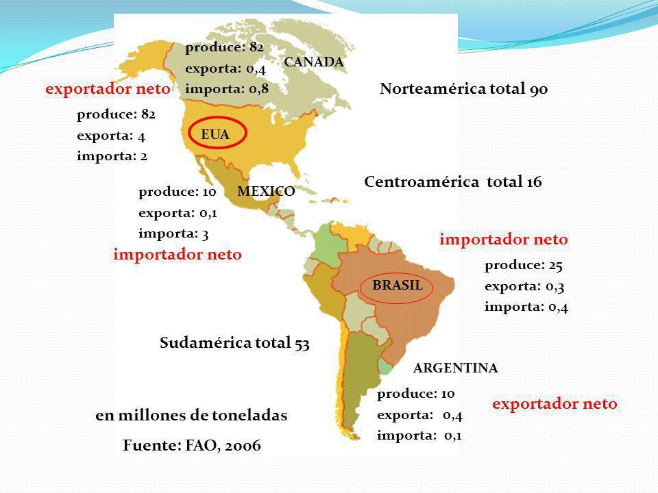 en millones de toneladas Fuente: FAO, 2006 Norteamérica total 90 Sudamérica total 53 Centroamérica total 16 produce: 82 exporta: 0,4 importa: 0,8 produce: 82 exporta: 4 importa: 2 produce: 10 exporta: 0,1 importa: 3 produce: 25 exporta: 0,3 importa: 0,4 produce: 10 exporta: 0,4 importa: 0,1 CANADA EUA MEXICO BRASIL ARGENTINA exportador neto importador neto