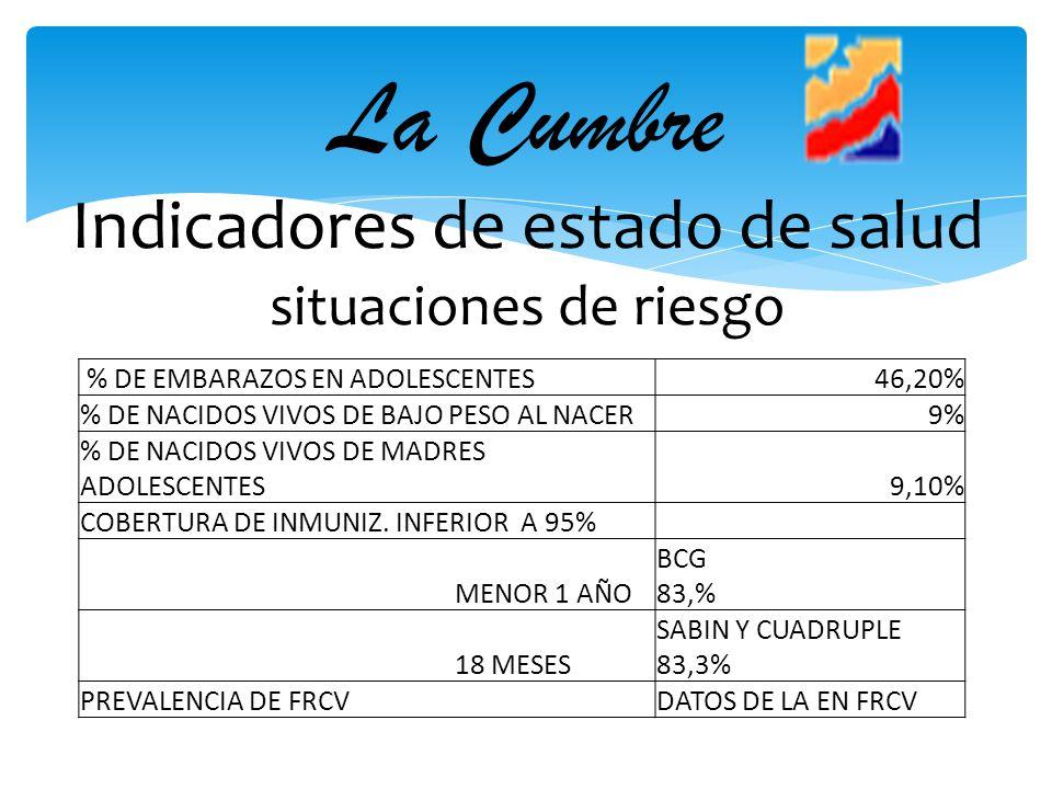 La Cumbre Indicadores de estado de salud situaciones de riesgo % DE EMBARAZOS EN ADOLESCENTES46,20% % DE NACIDOS VIVOS DE BAJO PESO AL NACER9% % DE NA