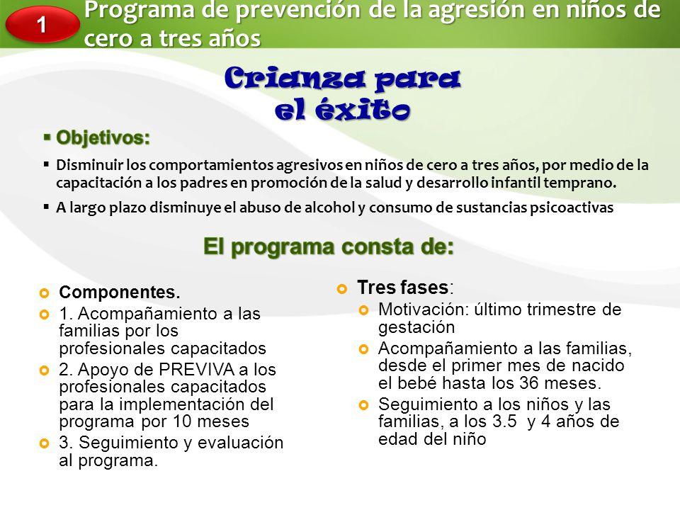 Programa de prevención de la agresión en niños de cero a tres años Componentes.