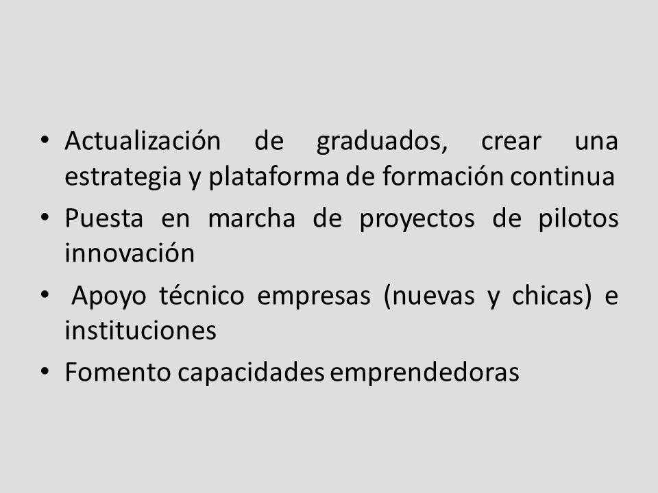 Actualización de graduados, crear una estrategia y plataforma de formación continua Puesta en marcha de proyectos de pilotos innovación Apoyo técnico empresas (nuevas y chicas) e instituciones Fomento capacidades emprendedoras