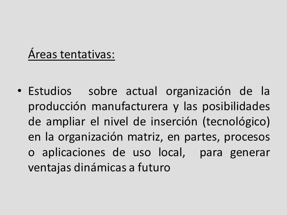 Áreas tentativas: Estudios sobre actual organización de la producción manufacturera y las posibilidades de ampliar el nivel de inserción (tecnológico) en la organización matriz, en partes, procesos o aplicaciones de uso local, para generar ventajas dinámicas a futuro