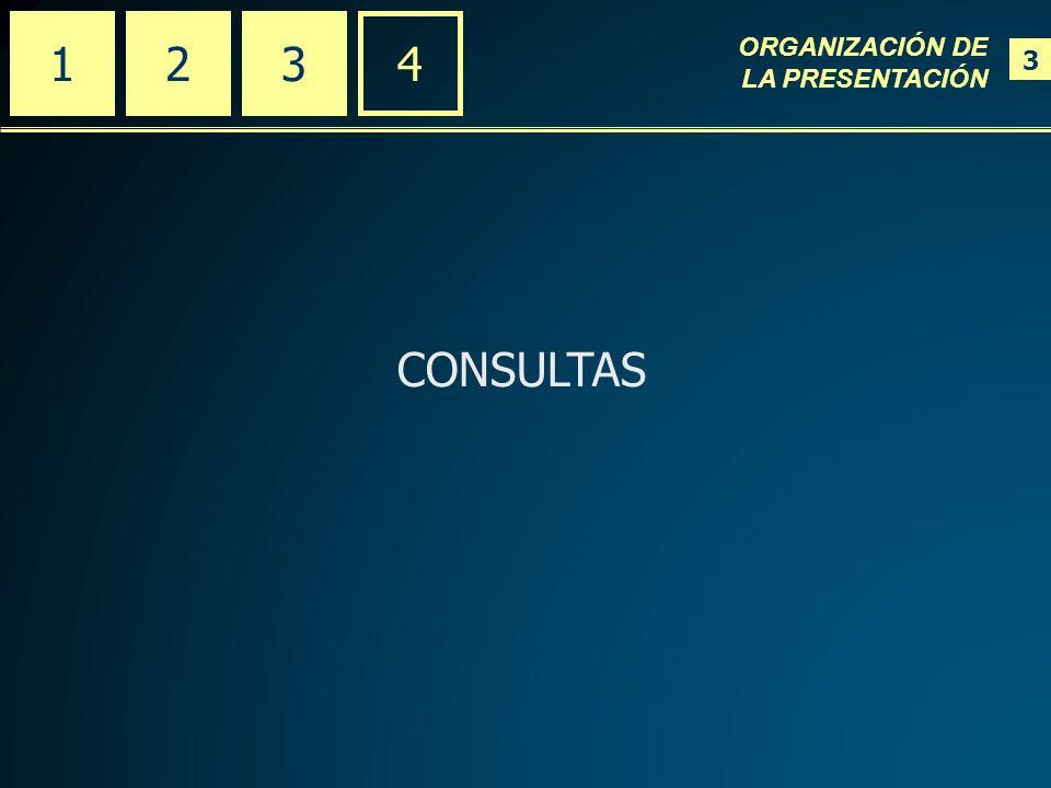 CONSULTAS 234 ORGANIZACIÓN DE LA PRESENTACIÓN 3 1