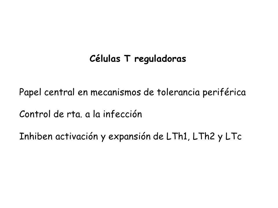 Células T reguladoras Papel central en mecanismos de tolerancia periférica Control de rta.
