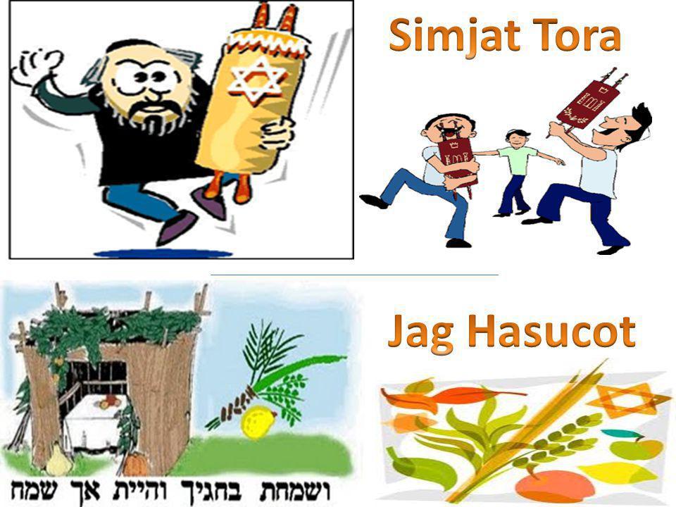 Los nombres de la Fiesta Jag Hasucot: Fiesta de las Caba ñ as, se relaciona con la salida de Mitzraim, y conmemora la residencia temporaria en la suc á utilizada por cada familia israelita en el desierto.