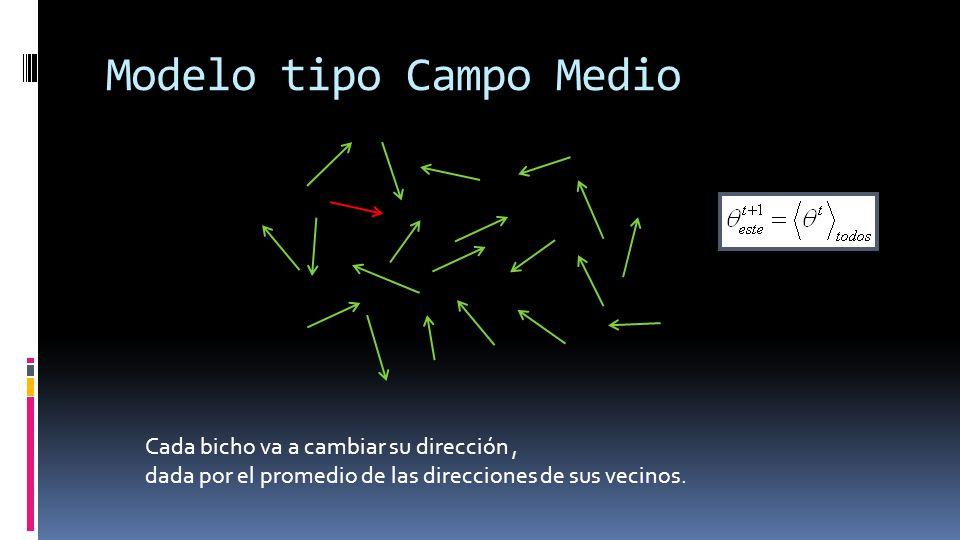Modelo tipo Campo Medio Cada bicho va a cambiar su dirección, dada por el promedio de las direcciones de sus vecinos.