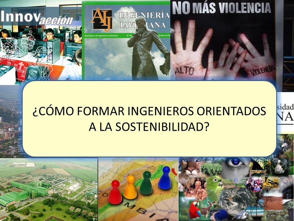 ¿CÓMO FORMAR INGENIEROS ORIENTADOS A LA SOSTENIBILIDAD? Ana Victoria Prados. PUJ Cali.
