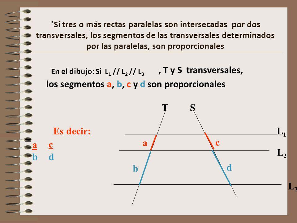 Si tres o más rectas paralelas son intersecadas por dos transversales, los segmentos de las transversales determinados por las paralelas, son proporcionales En el dibujo: Si L 1 // L 2 // L 3 TS L1L1 L2L2 L3L3, T y S transversales, los segmentos a, b, c y d son proporcionales Es decir: a a b b = c c d d