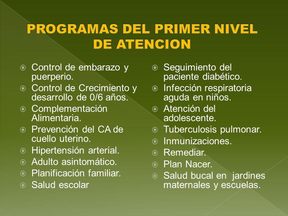 Control de embarazo y puerperio.Control de Crecimiento y desarrollo de 0/6 años.