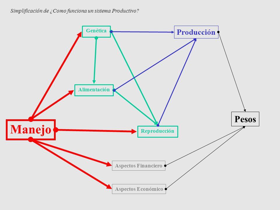 Manejo Genética Reproducción Alimentación Aspectos Financiero Aspectos Económico Producción Pesos Simplificación de ¿Como funciona un sistema Producti