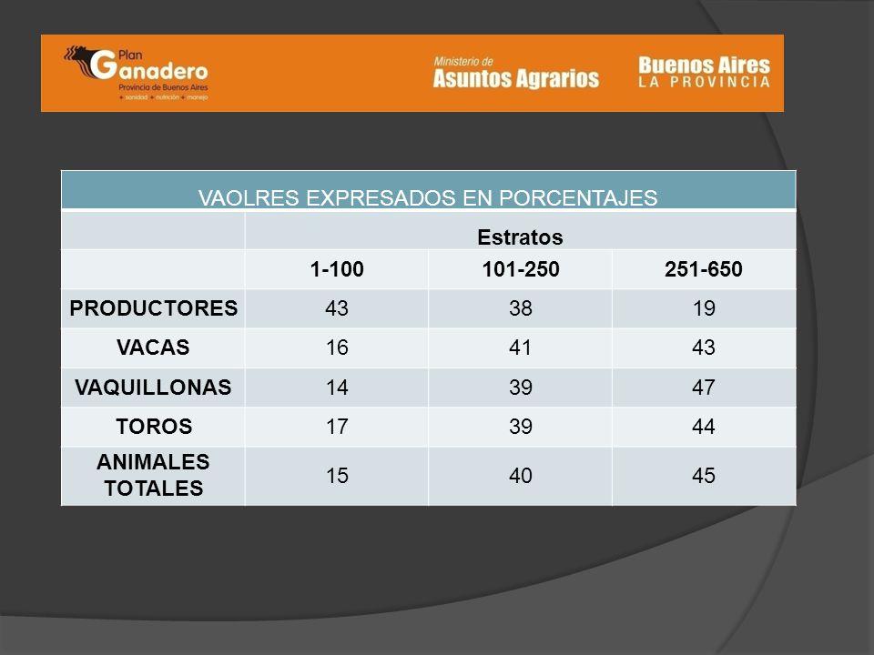 VAOLRES EXPRESADOS EN PORCENTAJES Estratos 1-100101-250251-650 PRODUCTORES433819 VACAS164143 VAQUILLONAS143947 TOROS173944 ANIMALES TOTALES 154045
