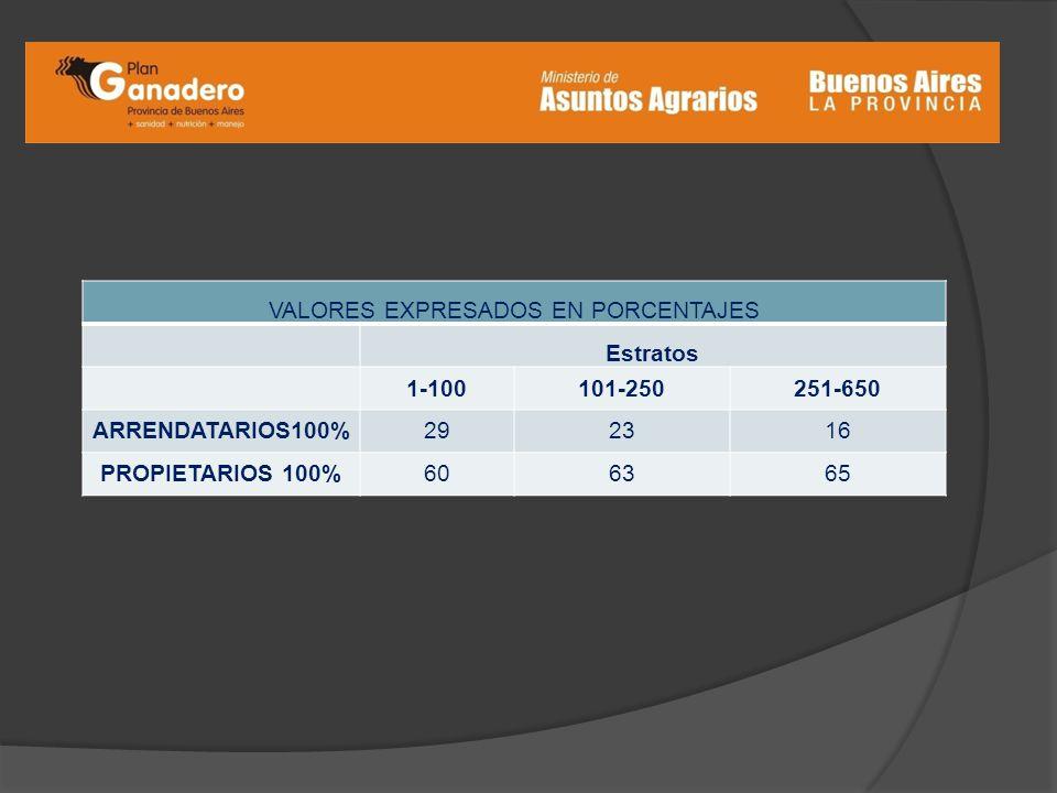 VALORES EXPRESADOS EN PORCENTAJES Estratos 1-100101-250251-650 ARRENDATARIOS100%292316 PROPIETARIOS 100%606365