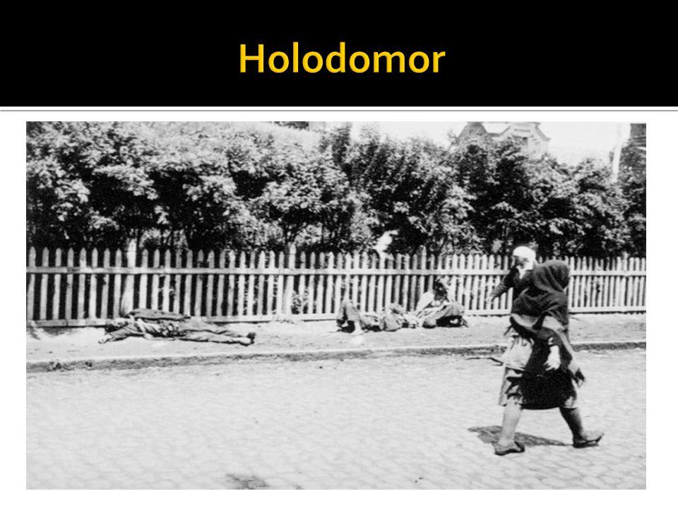 El genocidio armenio (en armenio: Հայոց Ցեղասպանություն ), a veces también llamado holocausto armenio, fue la deportación forzosa y masacre de un número indeterminado de civiles armenios, calculado aproximadamente en la muerte de entre un millón y medio y dos millones de personas, durante el gobierno de los Jóvenes Turcos, en el Imperio otomano, desde 1915 hasta 1923, durante la Primera Guerra Mundial.
