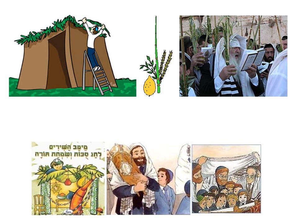 Simjat Torá Simjat Torah se celebra al concluir la festividad de Sucot.