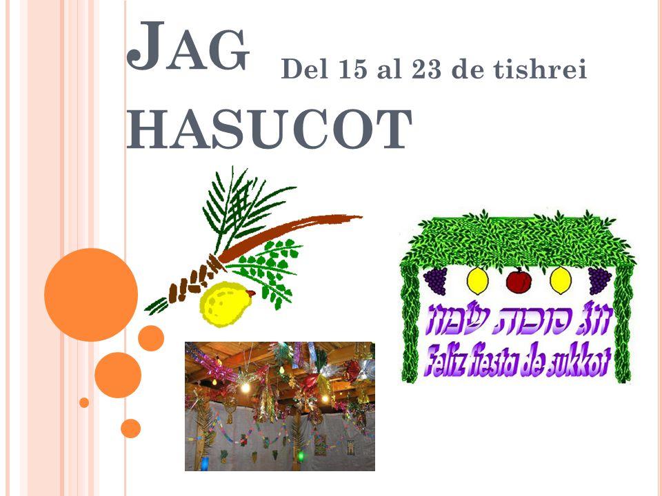 L OS NOMBRES DE LA FIESTA : Jag Hasucot : Fiesta de las Cabañas, se relaciona con la salida de Mitzraim y conmemora la residencia temporaria en la sucá utilizada por cada familia israelita en el desierto.