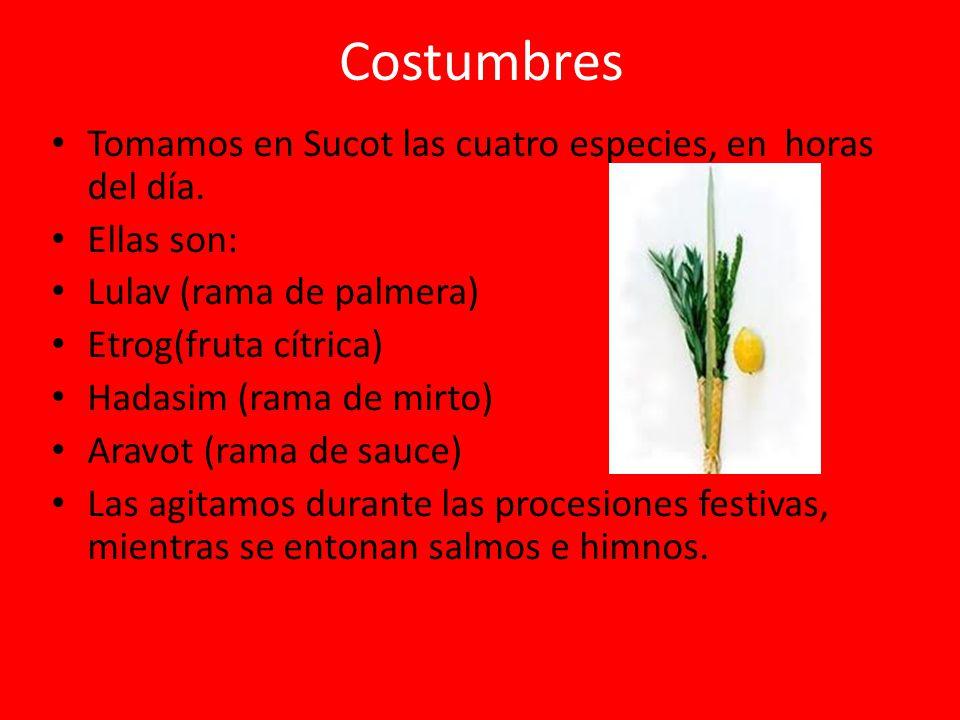 Costumbres Tomamos en Sucot las cuatro especies, en horas del día. Ellas son: Lulav (rama de palmera) Etrog(fruta cítrica) Hadasim (rama de mirto) Ara