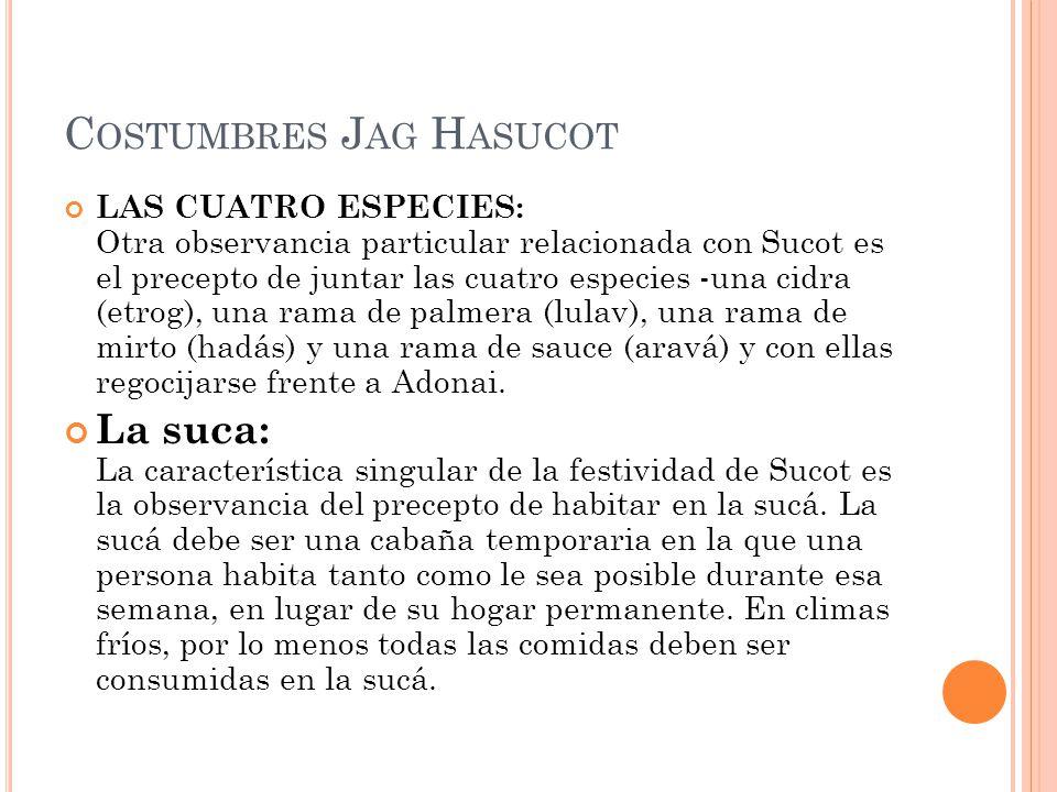C OSTUMBRES J AG H ASUCOT LAS CUATRO ESPECIES: Otra observancia particular relacionada con Sucot es el precepto de juntar las cuatro especies -una cidra (etrog), una rama de palmera (lulav), una rama de mirto (hadás) y una rama de sauce (aravá) y con ellas regocijarse frente a Adonai.