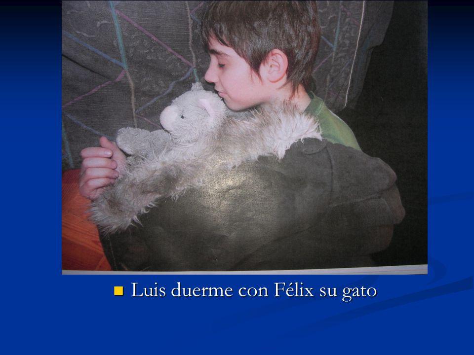 Luis duerme con Félix su gato Luis duerme con Félix su gato