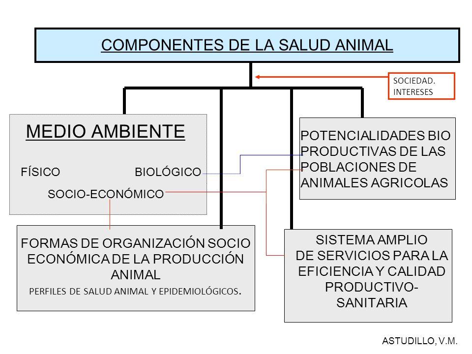 EL DESARROLLO ECONOM./SOCIAL: DETERMINANTE DE LA EVOLUCIÓN HISTORICA DEL PERFIL DE SALUD ANIMAL Entendemos por Perfil de Salud Animal al listado de los princi- pales problemas que afectan al proceso Salud-Enfermedad en las poblaciones de animales de producción.