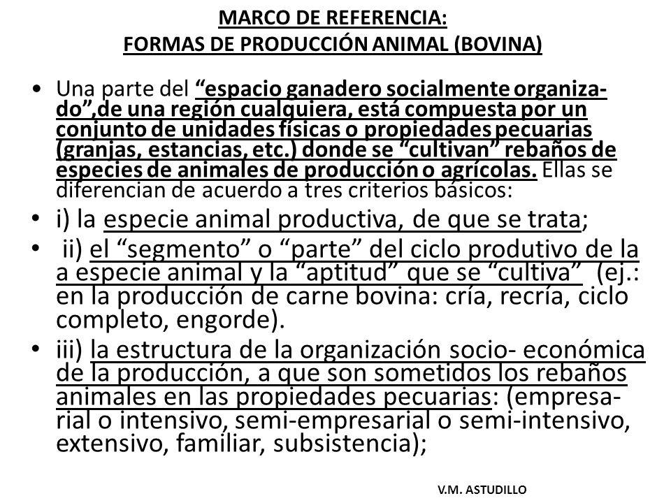 FORMAS DE PRODUCCIÓN ANIMAL: NIVEL DE ORGANIZACIÓN SOCIO-ECONÓMICA : Elementos.