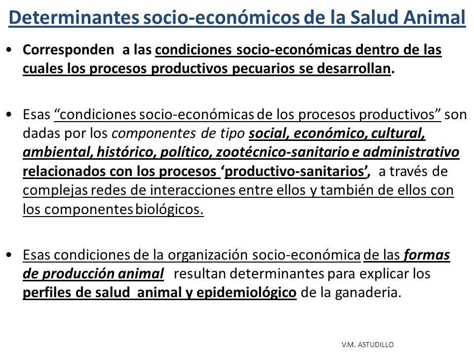 CONDI- CIONES SOCIO- ECONÓ- MICAS, CULTU- RALES Y AMBIEN- TALES 1.Inserción socio-económica de los productores.