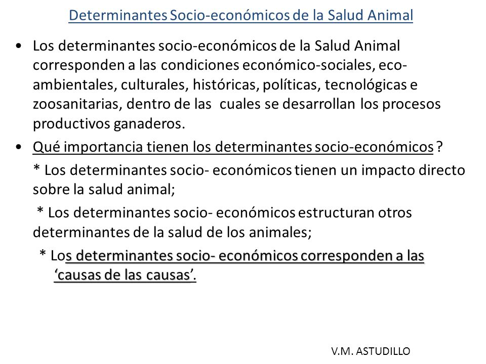 EXPLICACIÓN DE PROBLEMAS DE SALUD ANIMAL (1) En una aproximación esquemática, se puede decir que la situación de salud animal creada por perfiles de problemas epidemiológicos en poblaciones de animales, está biológica y socialmente determinada.