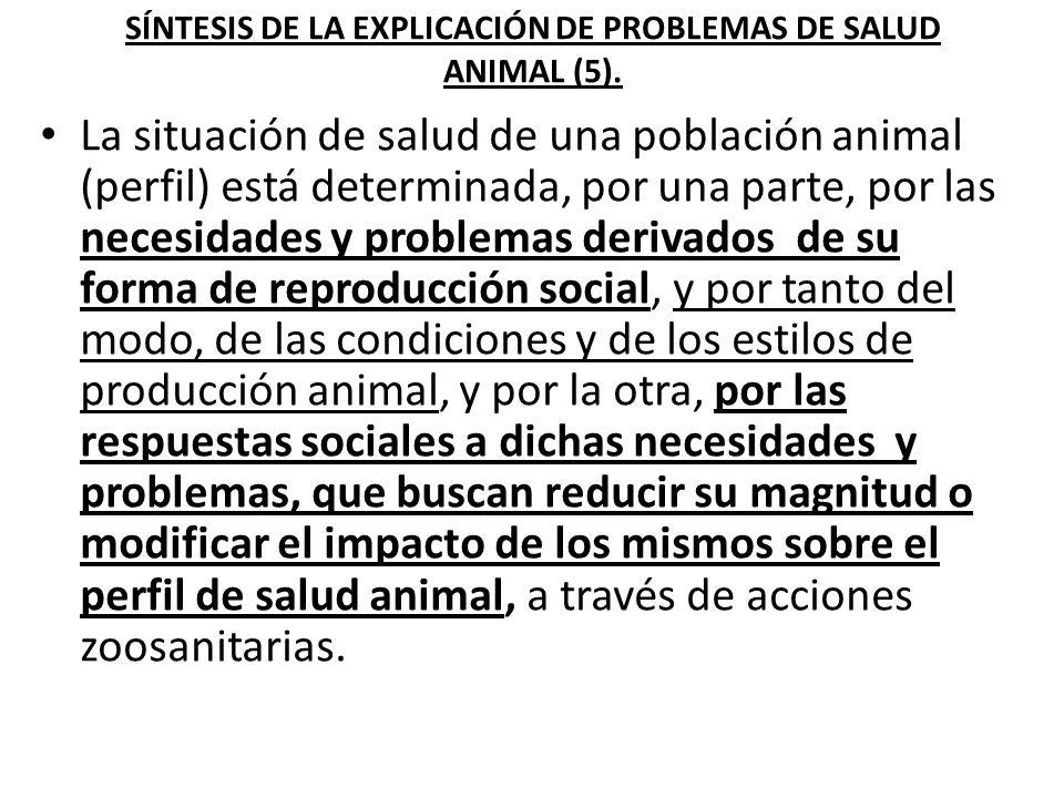 Espacios situacio- nales de la salud animal.Producción social de procesos.