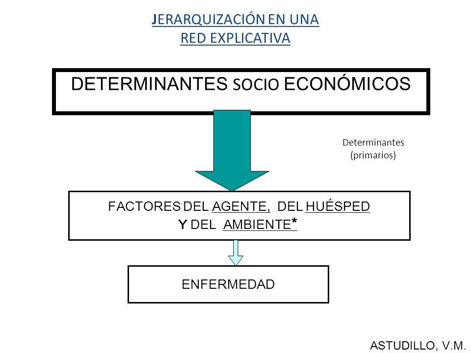 JERARQUIZACIÓN EN UNA RED EXPLICATIVA DETERMINANTES SOCIO ECONÓMICOS FACTORES DEL AGENTE, DEL HUÉSPED Y DEL AMBIENTE * ENFERMEDAD ASTUDILLO, V.M.