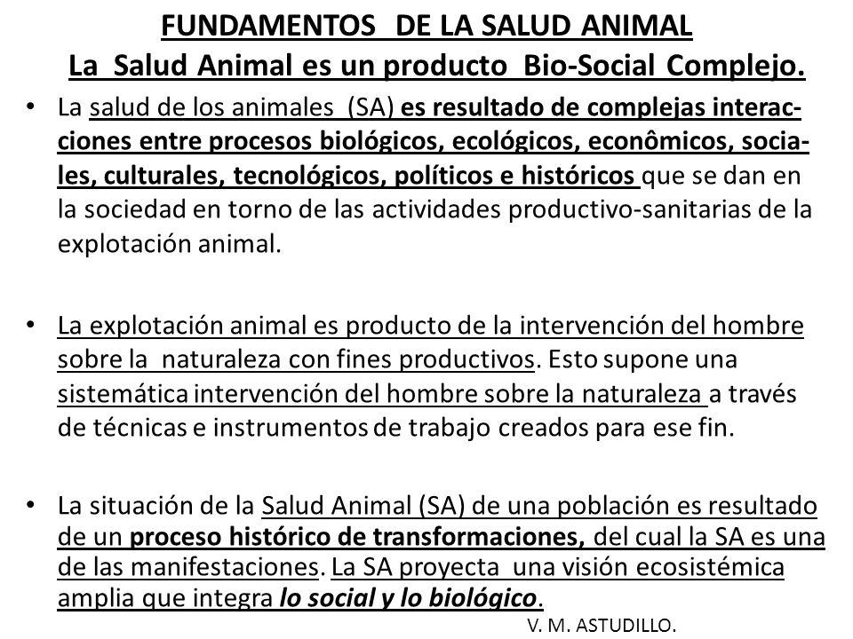 VISIÓN ECOSISTÉMICA DEL PROCESO DE SALUD ANIMAL (1 ) La Salud Animal (SA) es producto de un proceso bio-social, complejo.