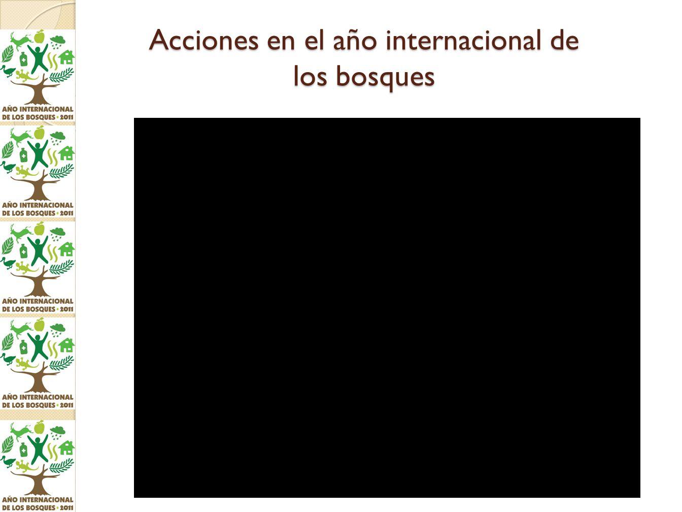 Acciones en el año internacional de los bosques