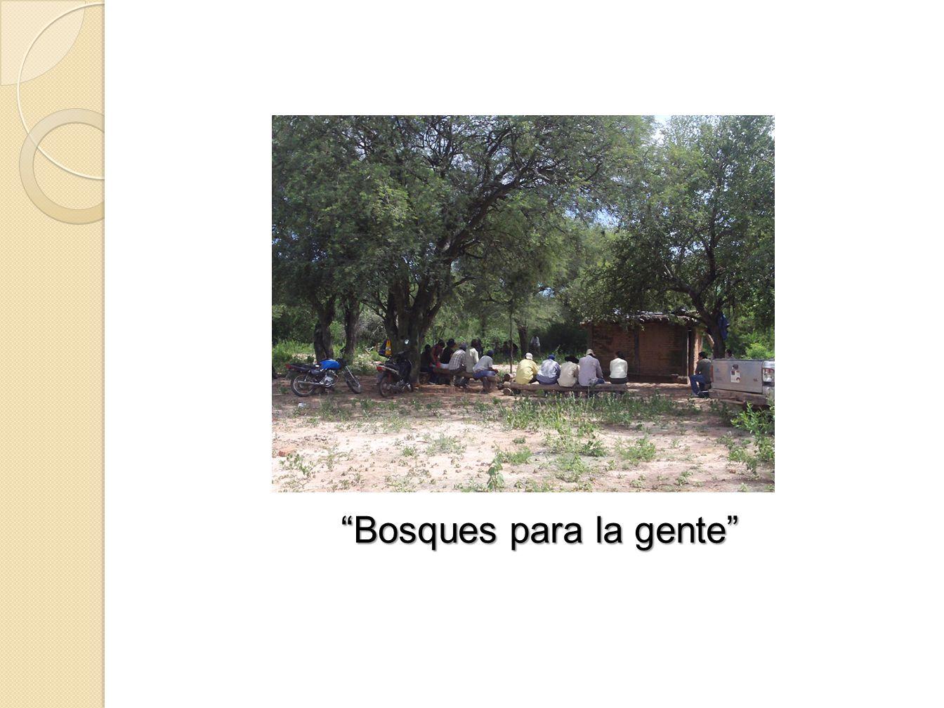 Bosques para la gente