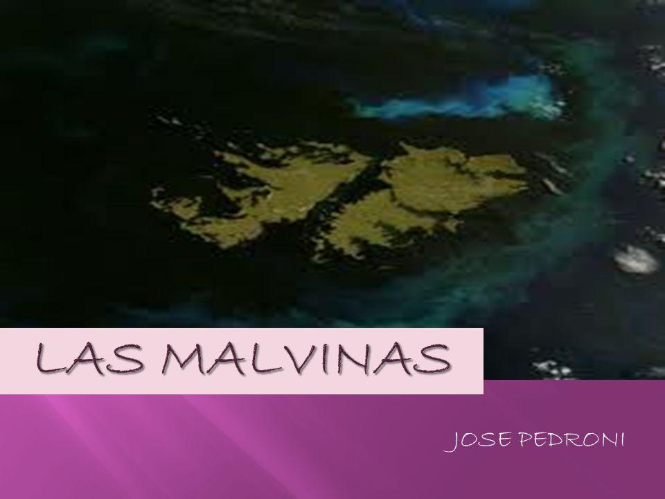Tiene las alas salpicadas de islotes.Es nuestra bella del mar.