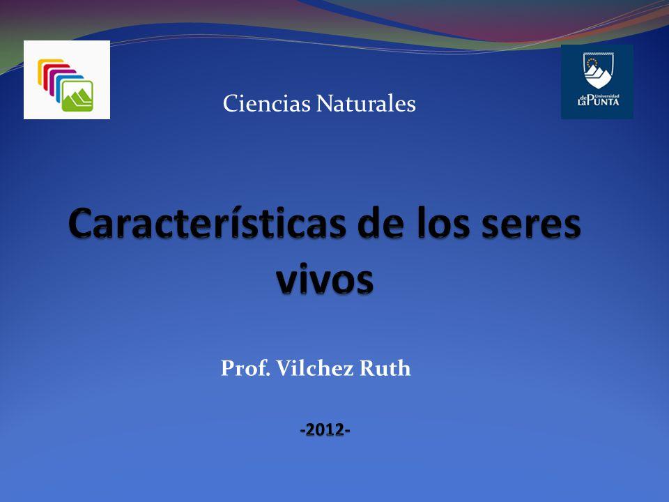 Ciencias Naturales Prof. Vilchez Ruth