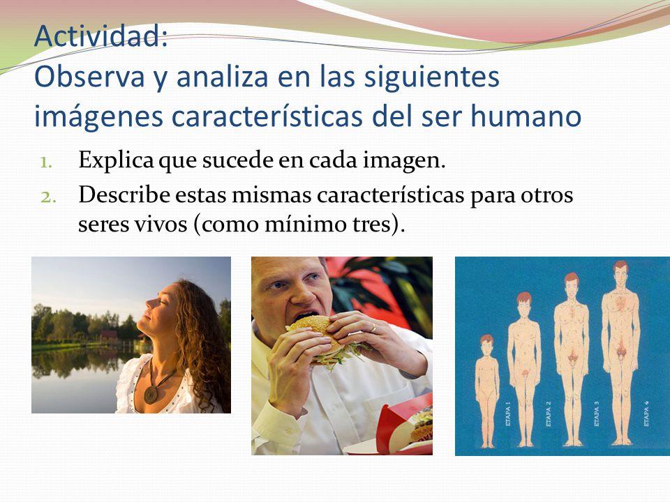 Actividad: Observa y analiza en las siguientes imágenes características del ser humano 1. Explica que sucede en cada imagen. 2. Describe estas mismas